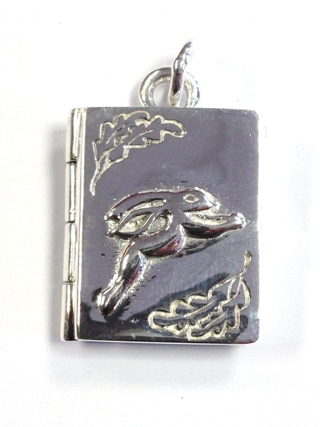Book of Shadows Silver Locket from Silver Symbolic Jewellery